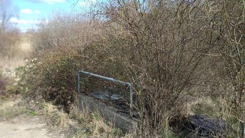 Pretekanie kanalizácie do potoka Ľubovníkova