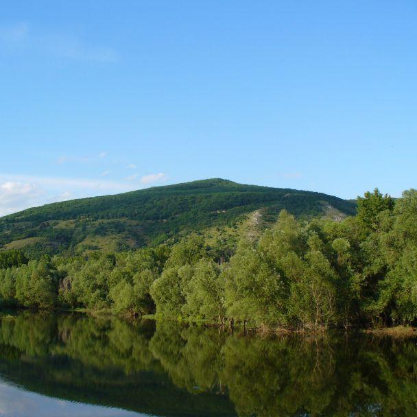 Devínske alúvium Moravy