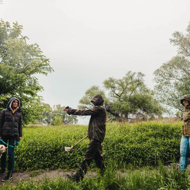 Bojová porada lovcov komárov